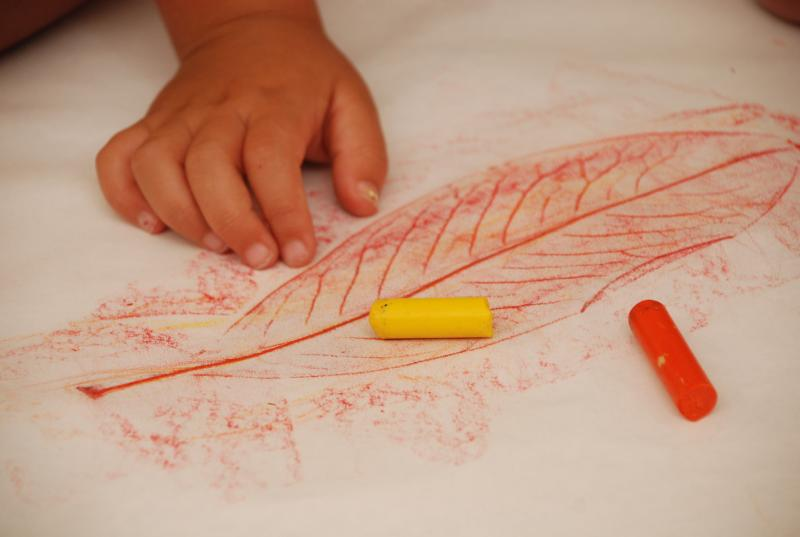 leaf-rubbings-diy-craft-via-mericherry_zpsee7761df