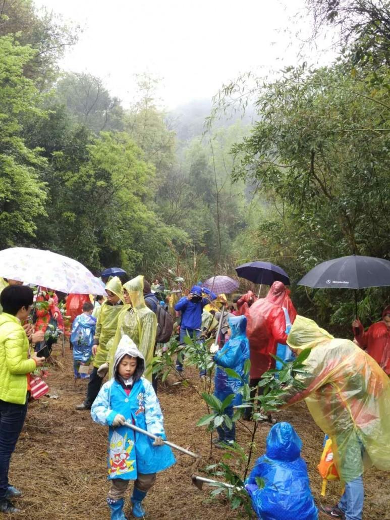 雨天照片mmexport1457893171625